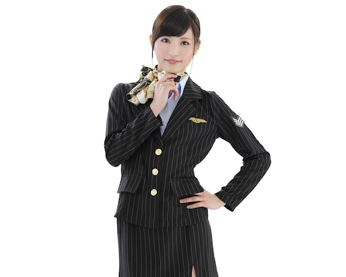 High-Class Flight Attendant Costume