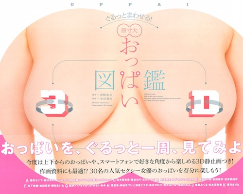 3D Oppai Zukan Full-Size Adult Video Idol Breasts Reference Book