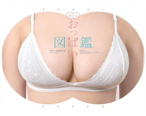 Oppai Zukan Full-Sized Gravure Idol Breasts Reference Book