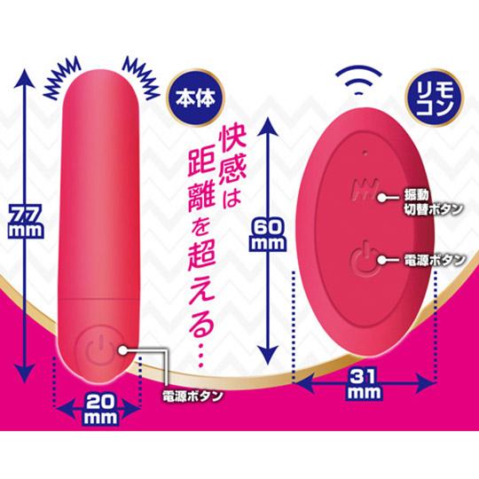 Remote Vibrating Panties