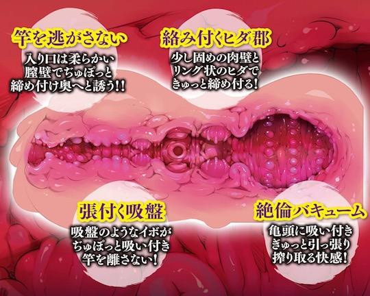 Meiki Hyakkei Best Onahole Takotsubo