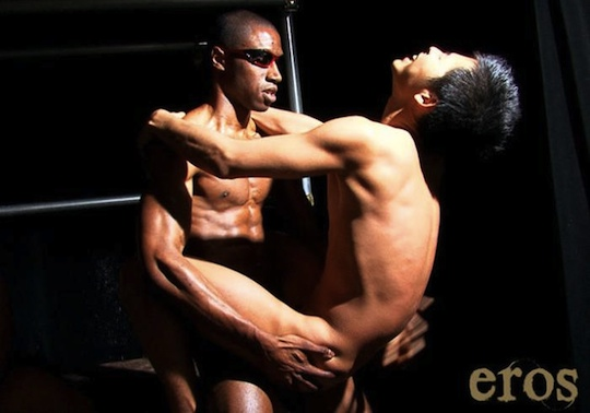 interracial gay porn dvd