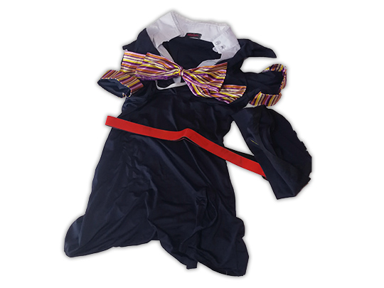 Chiaki Used Japanese Female Flight Attendant Cosplay Costume