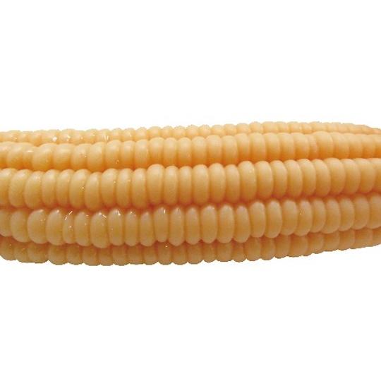 Sweet Corn Cock Dildo