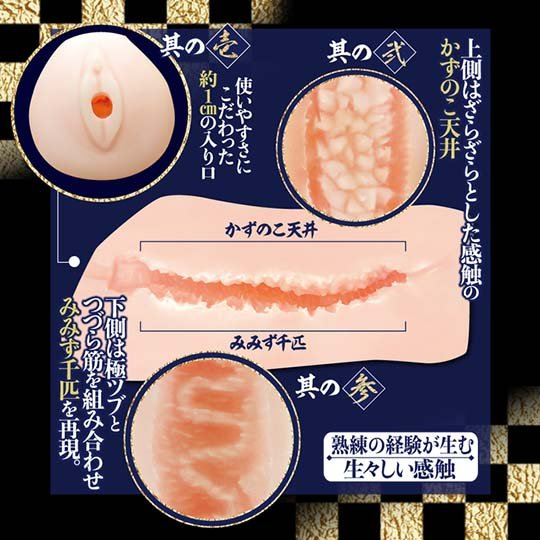 Takumi Nama Meiki Chisato Shoda Onahole (DVD Set)