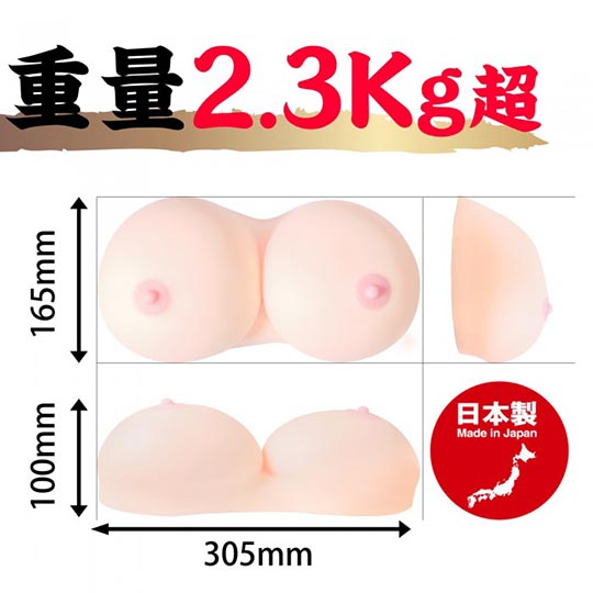 Gokujo Amazing Japanese Breasts