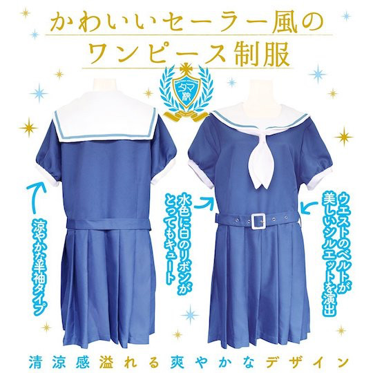 Private Girls School Sailor Uniform Costume