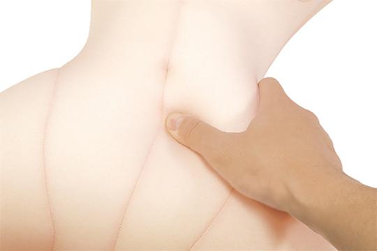 Perfect Cushion Body Plush Doll