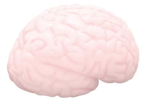 Brainfucker Masturbatory Aid Onahole
