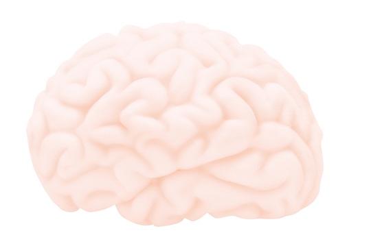 Brainfucker Mini Masturbator