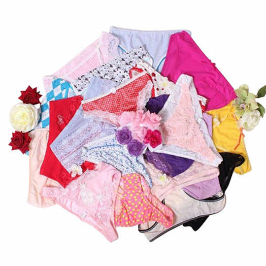 Sexy Japanese Full Back Panties Set (10 Pieces)